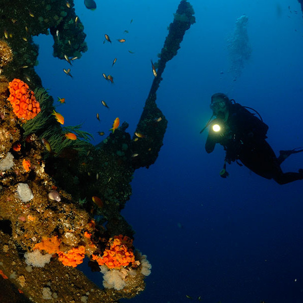 greatest-shoal-diving-4